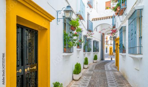 Fotografía  Scenic sight in the picturesque Cordoba jewish quarter