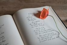 Gedicht, Blumen, Stillleben
