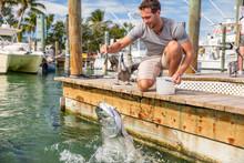 Florida Tourism Summer Vacatio...