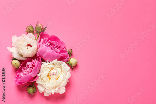 Beautiful peonies on color background, flat lay with space for text - 273555050