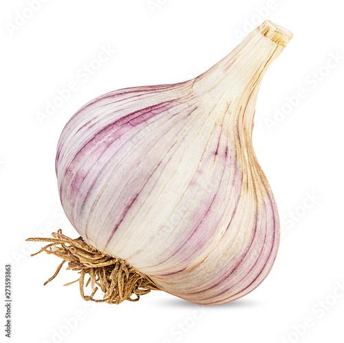 Fototapeta garlic isolated on white background obraz