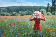 Dreamy Woman In Red Dress And A Big Red Striped Hat Turned Back In Beautiful Herb Flowering Poppy Field Summer. Vintage Elegant Romantic Look. Concept Of Lovely