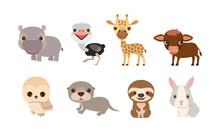 Vector Cute Animals Series, Hi...