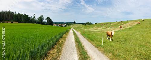 Fototapeta Panorama Bayern Oberpfalz obraz