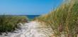 Panorama Dünenlandschaft auf Sylt an der Nordsee