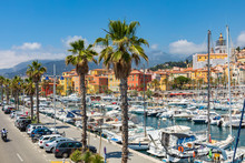 View Of Palm Tree And Harbor W...