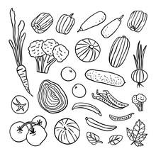 Vegetables Outline Vector Set ...