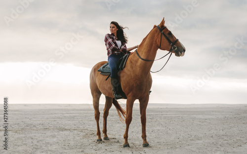 Photo  Woman on her horse at the beach