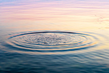 Circles On The Water. Wet Texture.