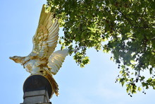 Golden Eagle, Part Of The Roya...