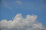 Fototapeta Na sufit - pola, gras, niebo, krajobraz, zieleń, hayfield, charakter, lato, blękit, jary, rolnictwa, farma, obszarów wiejskich, countryside, chmura, roślin, przenica, horyzont, kraj, chmura, kraina, trawnik, pię