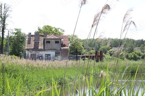 Fototapeta Stary zniszczony budynek na łące obraz