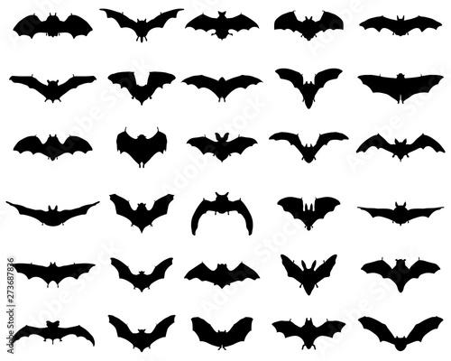 Fotografia Big set of black silhouettes of bats