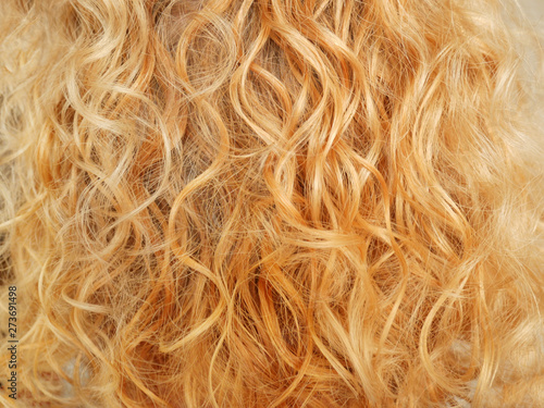 Fotografie, Obraz  beautiful blond wave and curly hair background