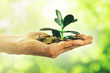 Leinwandbild Motiv money growth and investment concept. hand with coins and small plant