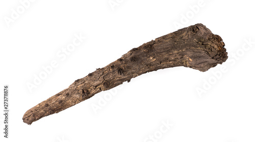 Fototapeta ancient club,wooden cudgel, Truncheon of stone age on a white background obraz