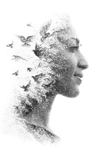 Paintography. Double Exposure Portrait Of An Elegant Woman's Profile Combined With Hand Drawn Pencil Drawing Of A Flock Of Birds Flying Into The Sky, Black And White
