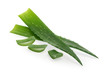 Leinwandbild Motiv Aloe vera isolated white background