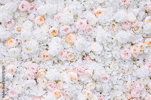 Obraz Flowers wall background with white and light orange roses. - fototapety do salonu