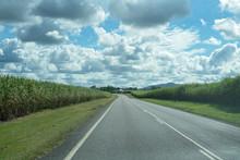 Road Amongst Cane Fields Under Cloudy Sky