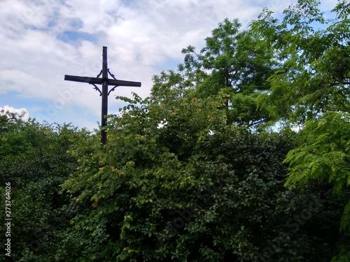 Fototapeta Bromierzyk, Kampinos, nawiedzona wieś wisielców obraz
