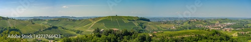 Fotobehang Khaki Castiglione Tinella town, wide panoramic view of Vineyards with blue sky, Langhe, Roero and Monferrato wine region, Italy