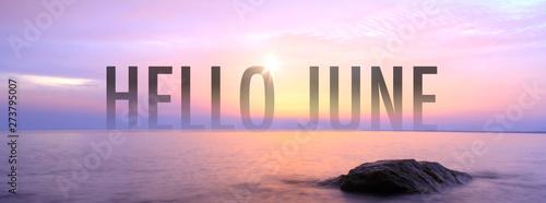 Obraz Hello June with nice seaview. - fototapety do salonu
