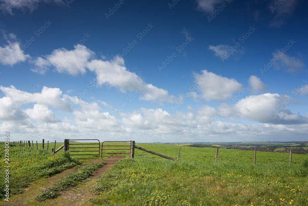 Fototapeta A farm gate on a hill in rural Victoria, in Australia.