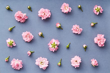 Rose Pattern. Flat Lay Spring And Summer Rose Flowers On A Blue Background. Repetition Concept. Top View