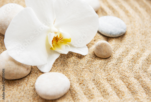 Zen pierres a sable Orchids and stones