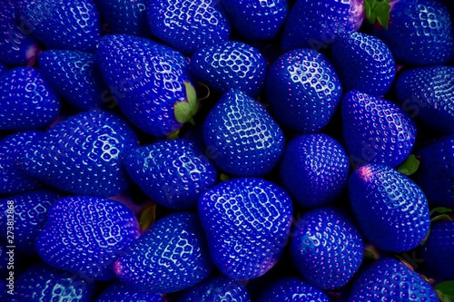 GENETICALLY MODIFIED FOODS GMO blue strawberry.Many blue strawberries stacked...