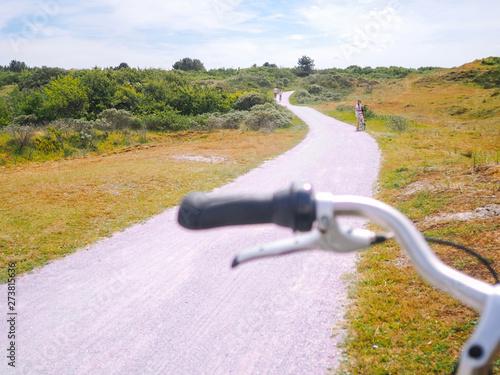 Fotografie, Obraz  Bicycles in dune landscape