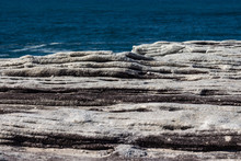 Oceanside Rocky Cliff Top Sandstone Wave Ridges With Blue Coastal Sea In Background