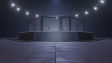 Mma Arena. Empty Fight Cage Un...