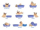 Fototapeta Fototapety na ścianę do pokoju dziecięcego - Pug set. Learning preposition concept. Animal above and behind
