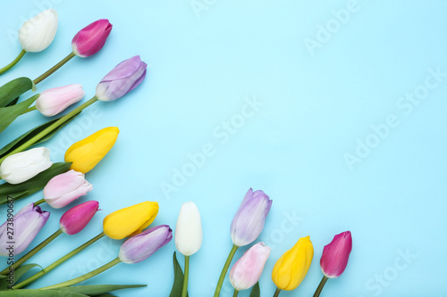 Bouquet of tulip flowers on blue background