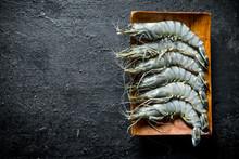 Fresh Raw Shrimps On A Plate.