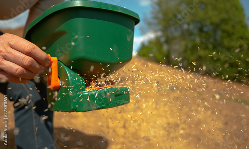 Fotografie, Obraz CLOSE UP, DOF: Unrecognizable person sowing grass seeds with a plastic device