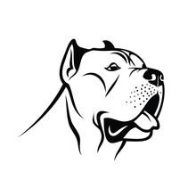 Cane Corso Dog - Isolated Vector Illustration