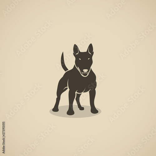 Valokuva Bull Terrier dog - vector illustration