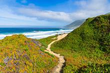 A Narrow Hiking Trail Curves T...