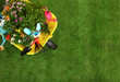 Wheelbarrow with flowers and gardening tools on grass, top view. Space for text