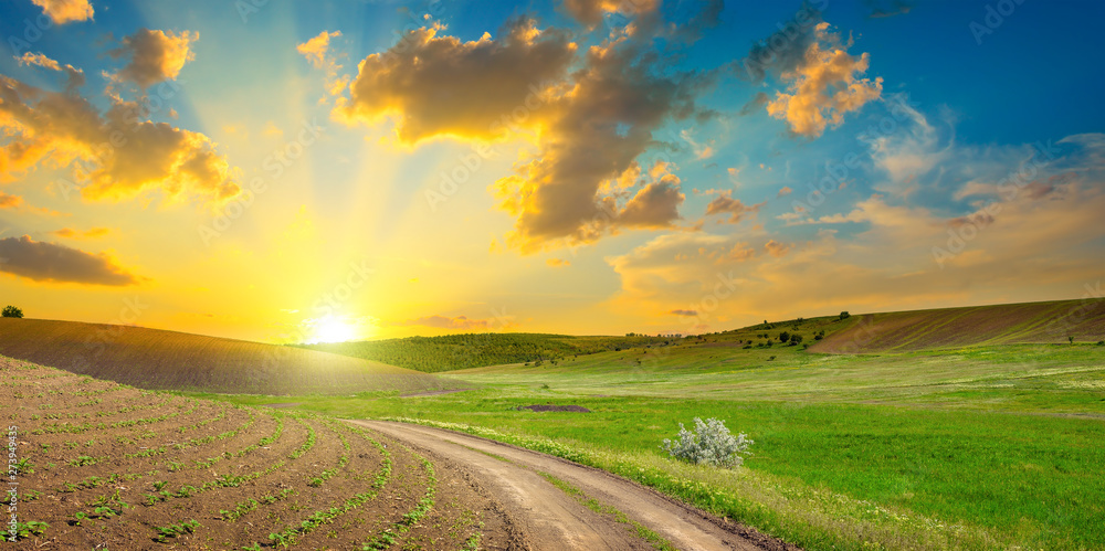 Fototapety, obrazy: Dirt road on panoramic agricultural landscape with bright sunset