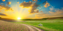 Dirt Road On Panoramic Agricultural Landscape With Bright Sunset