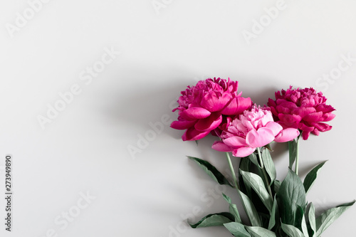Poster Fleur Minimal flowers composition. Pink peonies flowers on gray background. Flat lay, top view, copy space