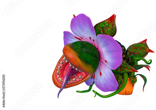 Photographie carnivorous plant with copy space in a white background