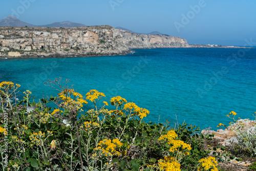 Photo Stands Melon The coast of Favignana Island in south mediterranean