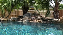 Peaceful Outdoor Pool Setting With Palm Trees, Blue Salt Water And A Bubbling Waterfall.