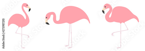 Pink flamingo icon set line. Three exotic tropical bird. Zoo animal collection. Cute cartoon character. One leg. Looking on the ground. Decoration element. Flat design. White background.
