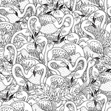 Black And White Flamingos Seamless Pattern. Coloring Page For Adults And Children